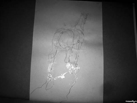11-dessin-analytique.JPG