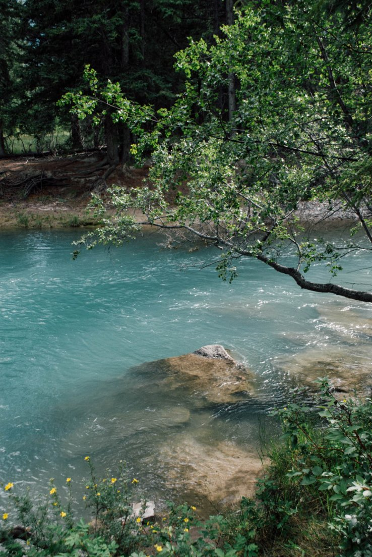 Turquoise waters of a river