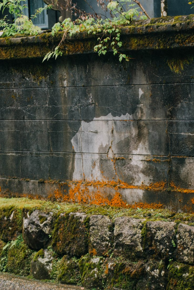 Wall with orange moss