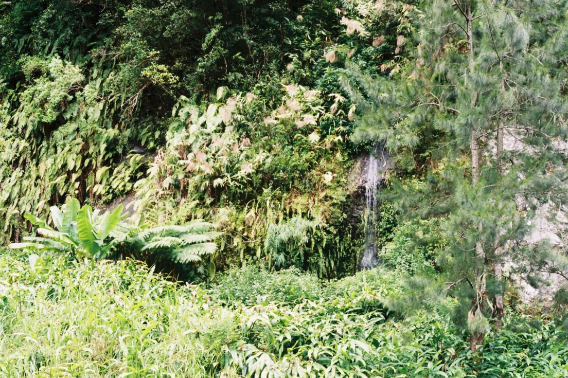 Waterfall and heavy vegetation where a ceremony was performed hidden from sight