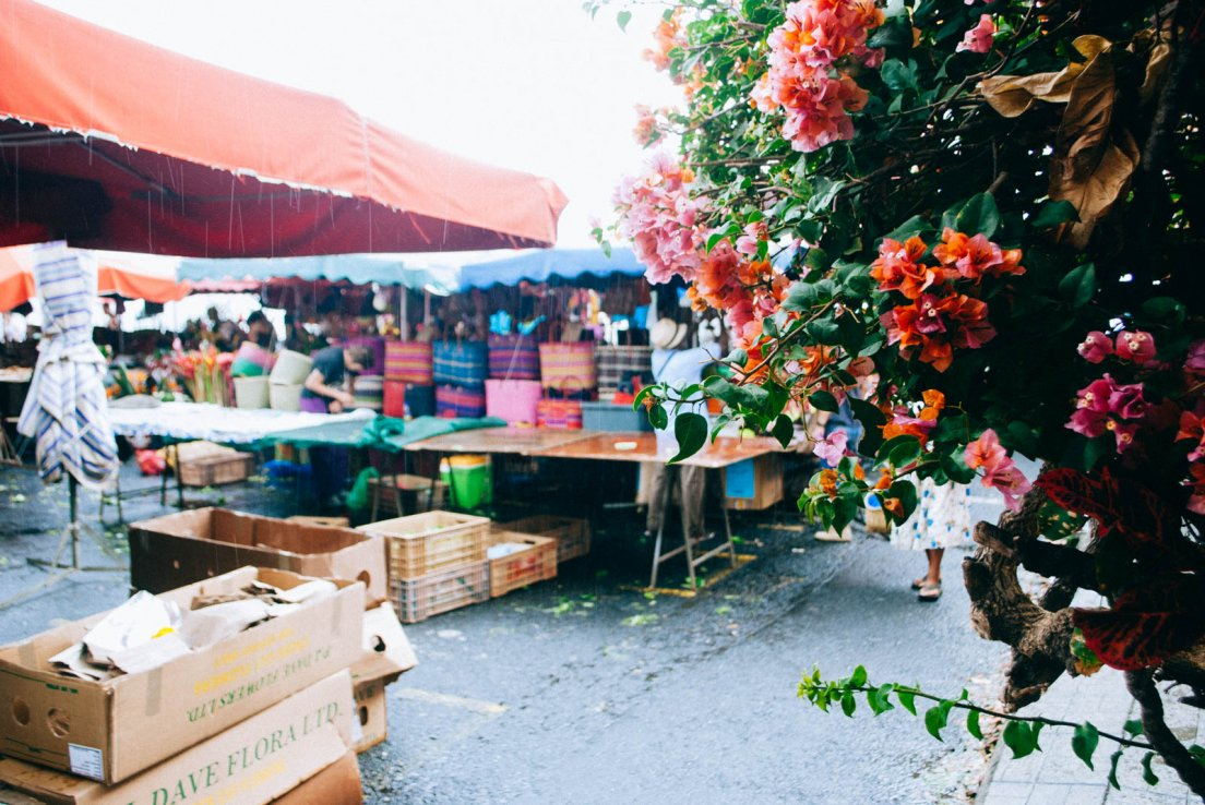 Huge rainpour and bougainvillea in a artisanal market