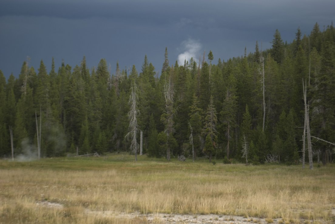 Dark grey sky upon the pine forest and a puff of white smoke due to volcanic activity