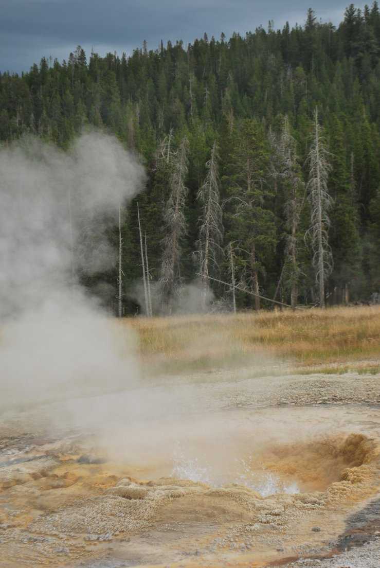 Boiling pool in the meadow