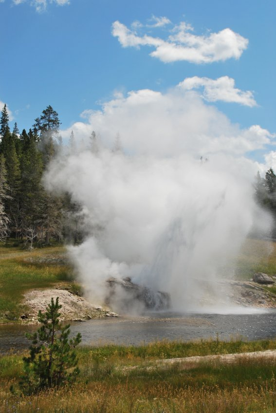 Sequence 3/3 of the eruption of the Riverside Geyser