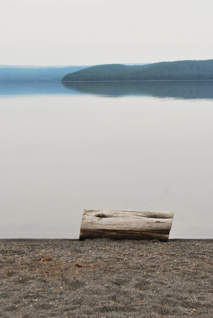 Grey day on the shore of Shoshone Lake