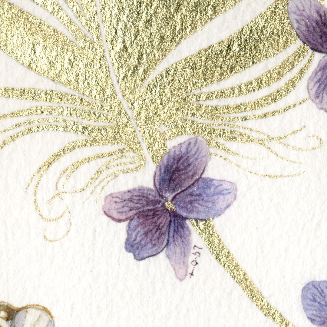 Closeup 4 of Herbier Lingerie Hiver